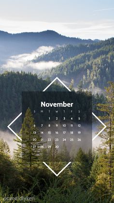 Nature scene beautiful forest fog fall evergreens photography fall scene pine needles November calendar 2016 wallpaper you can download for free on the blog! For any device; mobile, desktop, iphone, android!