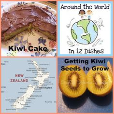 Crafty Moms Share: Around the World in 12 Dishes--New Zealand Kiwi Cake Cooking With Kids, Easy Cooking, New Zealand Country, Kiwi Cake, Continents And Oceans, Gourmet Recipes, Healthy Recipes, Thinking Day, Fish And Seafood