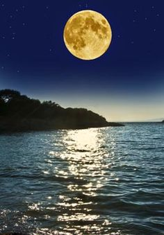 ❥ Island of the Moon Perfume Recipe