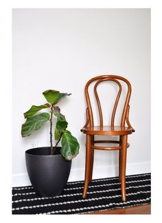 vintage thonet no 18 bentwood chair mintmoss on etsy mintandmoss mint