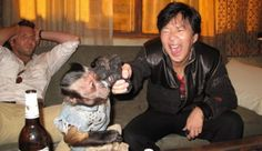 Chow, the Chinese death-obsessed, all-around crazy man from The Hangover series may be getting his own spin-off film. Bradley Cooper, Chow Hangover, Movies Showing, Movies And Tv Shows, Leslie Chow, Mr Chow, Hogwarts, Incredible Film, Ken Jeong