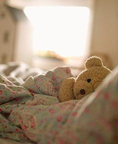 sweet little teddy bear.reminds me of my kids childhood.always found stuffed animals in their bed.even when they were no longer there. Tatty Teddy, My Teddy Bear, Cute Teddy Bears, Teddy Pic, Bear Birthday, Birthday Love, Cute Bear, Color Splash, Little Girls