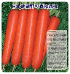[Visit to Buy] 2017 Limited New Annual Summer Excluded Mini Garden Mini Interest Sementes And Heyday Carrot Seed 100 G Organic Vegetable Seeds  #Advertisement