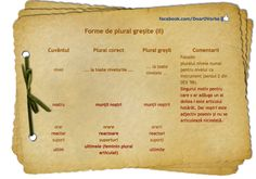 Forme de plural Romanian Language, Grammar, Ps, Learning, Reading, Studying, Teaching, Education