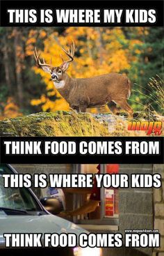 can you be anti hunting and eat commercially killed drive through meat?How can you be anti hunting and eat commercially killed drive through meat? Deer Hunting Humor, Hunting Jokes, Quail Hunting, Deer Hunting Tips, Hunting Girls, Turkey Hunting, Archery Hunting, Hunting Stuff, Funny Hunting