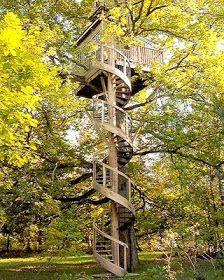 SUGAR: Tree Houses