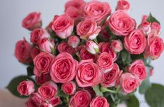coral spray roses, coral roses, spray rose bouquet, flower moxie Diy Wedding Bouquet, Diy Wedding Flowers, Diy Flowers, Flower Diy, Flowers Today, Flowers Online, Standard Roses, Diy Boutonniere, Coral Roses