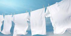 Best Way To Wash White Undershirts? Why Do My Undershirts Turn Grey? Washing White Clothes, Unshrink Clothes, Aroma Beads, Laundry Hacks, Laundry Drying, Laundry Rooms, Laundry Service, Laundry Detergent, Wax Melts