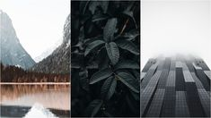 5 Wallpapers That Will Look Perfect On Your iPhone | 86