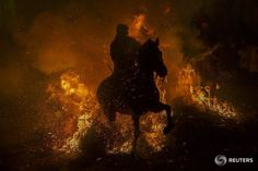 """A man rides his horse through flames during the annual """"Luminarias"""" religious celebration – held on the night before the feast of Saint Anthony, patron of animals – in the village of San Bartolome de los Pinares, Spain on Jan. Pictures Of The Week, Cool Pictures, Anton, Patron Saint Of Animals, Boko Haram, Central City, Image Of The Day, Patron Saints, Show Horses"""