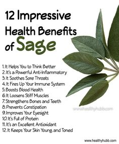 Sage is incredibly nutrient dense and has a range of impressive benefits for our body. It also helps make almost any dish we use it in taste great too! Here are 12 impressive benefits of Sage