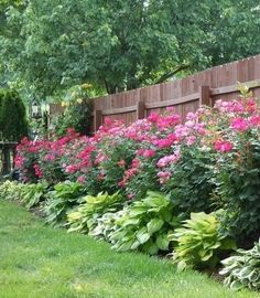 Top 5 Rules for Choosing Plants for your Garden « Garden Challenger