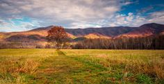 """There is a reason they call them """"Great"""" #smokymountains"""