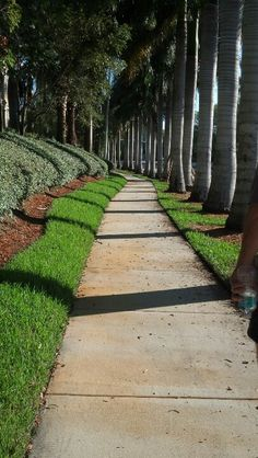 Walk & exercise with this view; Weston, Florida