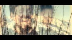 Song of Life - Libera