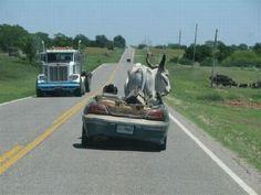 Never let your man borrow your car! :{