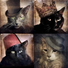 Cats in the Hats Collection  Four 5x5 Prints by TheLonelyPixel, $30.00