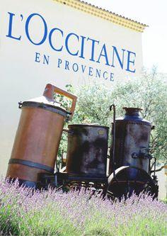 l'occitane en provence factory tour - Google Search
