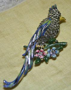 Vintage Coro Bird of Paradise Calopsitta enamel by lbjool on Etsy, $45.00