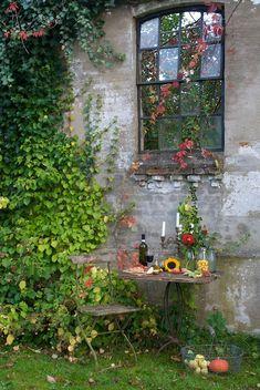 Summer | Sonja Bannick Pictures #garden