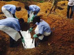 #Kailahun, West African #healthcare systems reel as #Ebola toll hits 932 - #africa  World Health Organization ( #WHO ) Doctors Without Borders/ Médecins Sans Frontières ( #MSF )  www.reuters.com/article/2014/08/06/us-health-ebola-idUSKBN0G61ID20140806