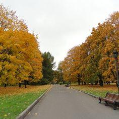 Осень в Коломенском....