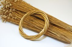 Golden Grass - Capim Dourado