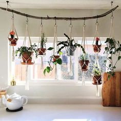 35 Creative hanging plant projects for the Scandinavian style - Dekoration Ideen 2019 House Plants Decor, Plant Decor, Hanging Plant Diy, Indoor Plant Hangers, Hanging Herbs, Low Maintenance Indoor Plants, Plantas Indoor, Plant Projects, Decoration Plante