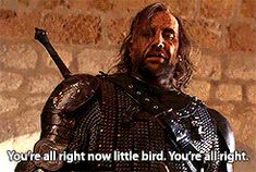 Sandor saves Sansa