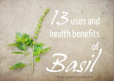 13 uses and health benefits of basil you didn't know about via @Kanelstrand