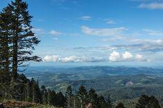 Photographing Oregon: Mary's Peak