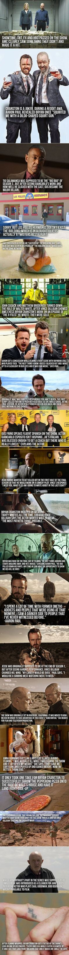 Breaking Bad facts - http://geekstumbles.com/funny/lolsnaps/breaking-bad-facts/