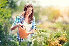 7 roślin, które nigdy nie powinny rosnąć w Twoim ogrodzie #rośliny #ogród #roślinyogrodowe