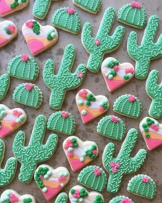"24.3k Likes, 137 Comments - Wilton Cake Decorating (@wiltoncakes) on Instagram: ""Loving these fun cacti  cookies  from @sweeterwynsbakedgoods! Can you share one with us, please?…"""