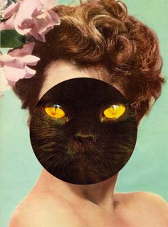 dark cat eye  -Zoë Austin