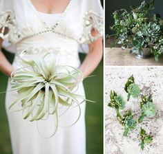 Starting Succulents | Mi Belle Photography via Engaged and Inspired | Design Sponge | Emily ...