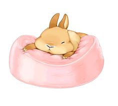 bunny sleeping on a pink cushion. マシュマロ系うさぎ
