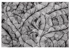 Artist: Vasilj Godzh (Russia) Title: Abstract Texture 0097
