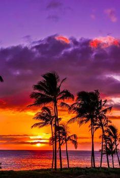 Intense Sunset, in Hawaii