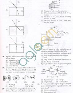 CBSE Solved Sample Papers for Class 10 Science SA2 - Set A