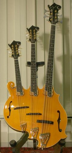 the triple-neck mandolin/bass   John Paul Jones