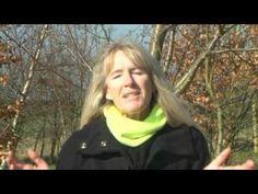 DVD - The Essence of Watercolour with Hazel Soan