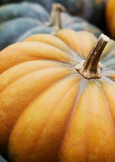 Pompoenen   Pumkins #autumn