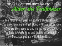 Celtic Tree Astrology - Alder: the Trailblazer - March 18 to April 14 Celtic Zodiac Signs, Celtic Astrology, Aries Astrology, Pisces, Horoscope, Taurus, Astrology Meaning, Alder Tree, Green Witchcraft