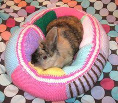 Hey, I found this really awesome Etsy listing at https://www.etsy.com/listing/179026356/ugli-donut-bunny-rabbit-bed-for-a-small