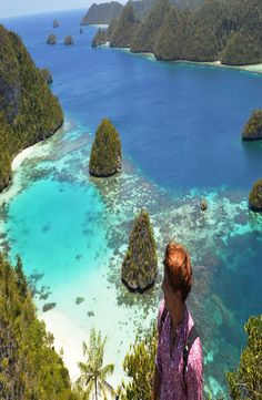 Raja Ampat is located in West Papua, and even if it is part of Indonesia, it does not share most of the tradition, religion, race and culture. West Papua, Best Scuba Diving, Paradise Island, Florida, Southeast Asia, Cool Pictures, Travel Destinations, Tourism, Travel Photography
