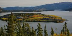 Image result for yukon wilderness pictures