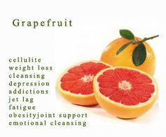 Grapefruit is tangy & juicy fruit with dense nutrient.Know grapefruit health benefits & nutrition facts.protect from cancer,tumor,ageing,promote weight loss Health Benefits Of Grapefruit, Grapefruit Diet, Pink Grapefruit, Doterra Grapefruit, Easy Weight Loss, Healthy Weight Loss, How To Lose Weight Fast, Reduce Weight, Losing Weight