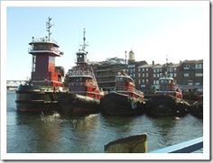 I love our downtown tugboats!  This picture has a couple of visiting tugs in it.