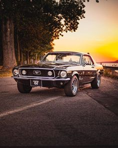 Fort Mustang, Ford Mustang 1967, Mustang Fastback, Mustang Cars, Ford Mustang Classic, Custom Muscle Cars, Old Muscle Cars, Black Mustang, Vintage Mustang